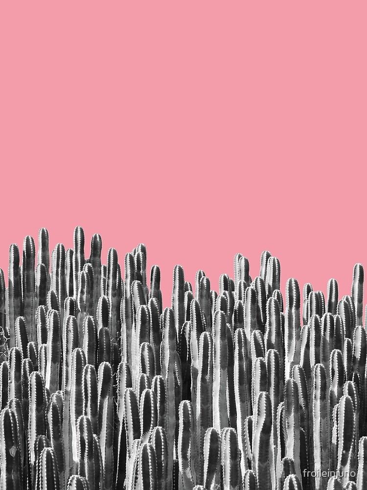 Cacti 02 von froileinjuno
