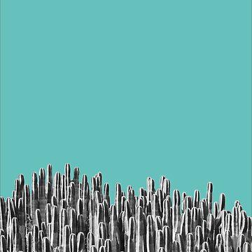 Cacti 01 von froileinjuno