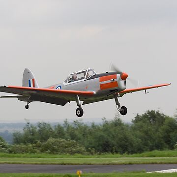 de Havilland Chipmunk ZS-VTL near touchdown by spotlightkid