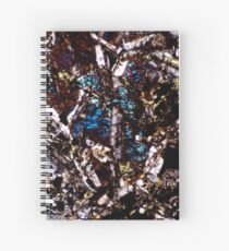 Pyroxene and Feldspar Spiral Notebook