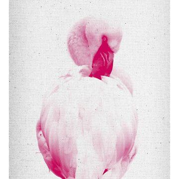 Flamingo 02 von froileinjuno