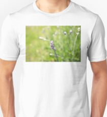 Lavanda in grass T-Shirt