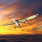 An Early German Monoplane based on the Early Eindeckers ca 1900 by Dennis Melling