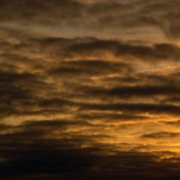 Cloudwork Orange von Mows
