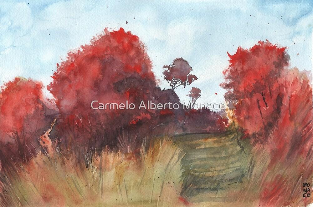Red Forest by Carmelo Alberto Monaco