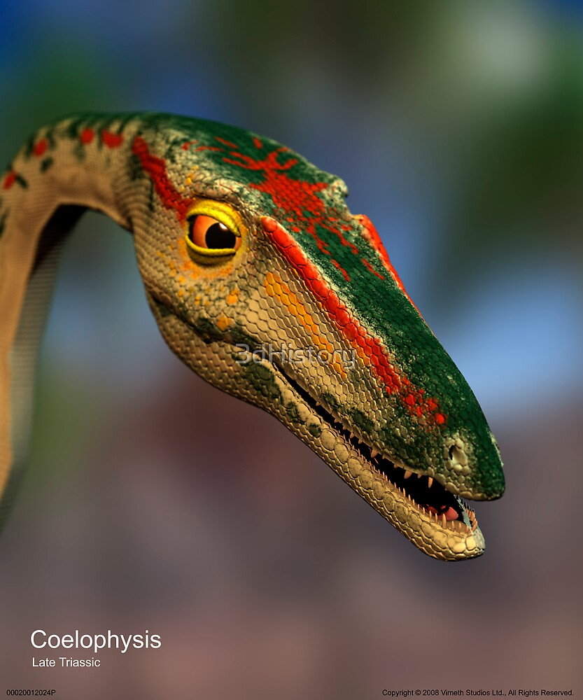 Coelophysis by 3dHistory