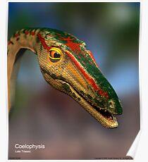 Coelophysis Poster