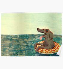 Entspanntes Doggo Poster