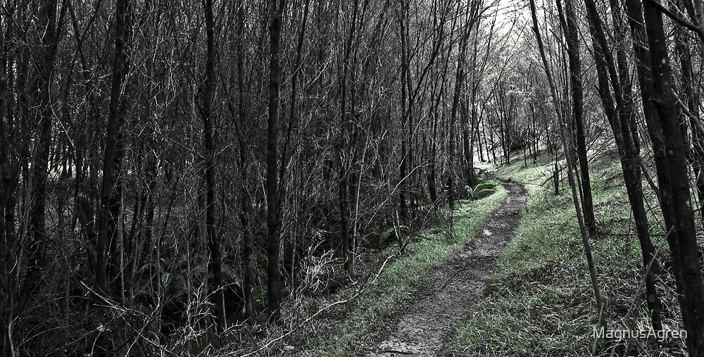 The Green Path by MagnusAgren