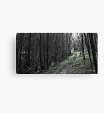 The Green Path Canvas Print