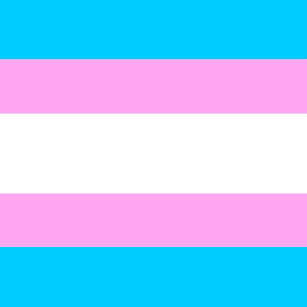 Transgender Flag Equality LGBT Summer Festival All Over Print by ThatMerchStore