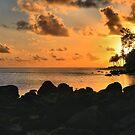 Kauai Awakes by DJ Florek