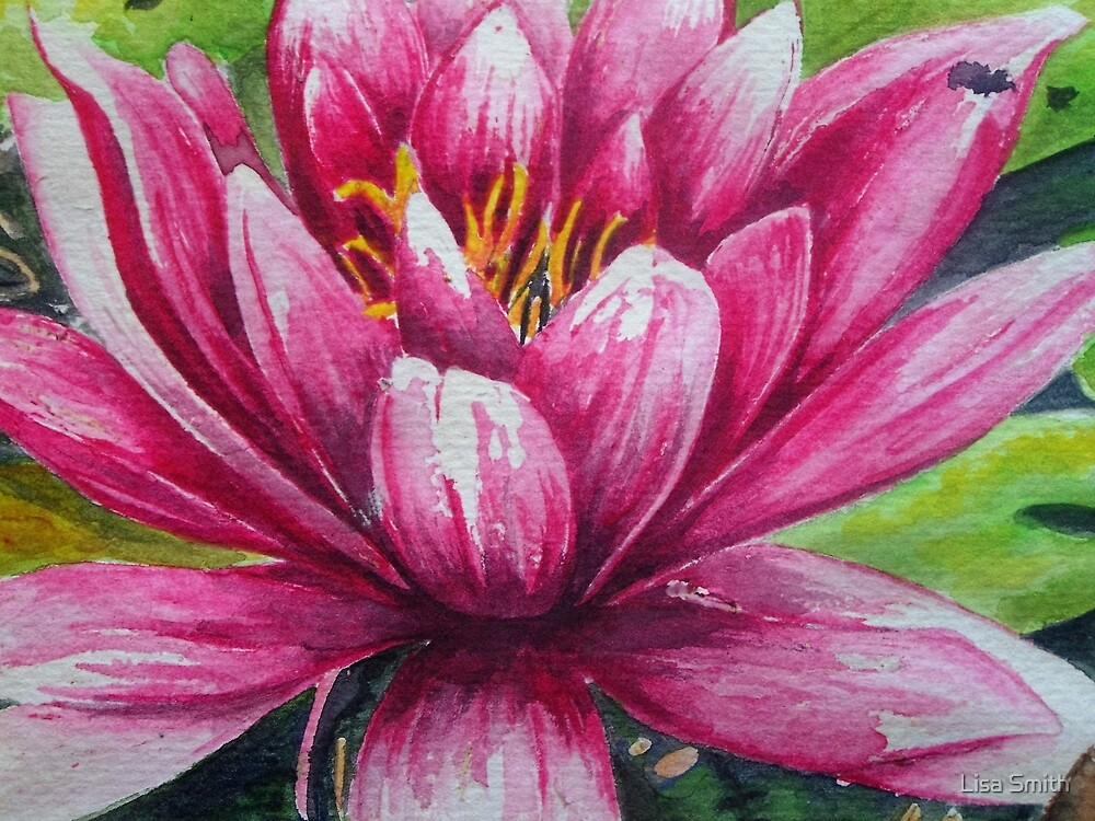 Waterlily by Lisa Smith