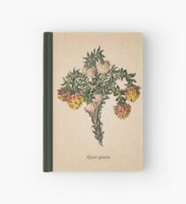 Placa vieja de Liparia sphaerica Cuaderno de tapa dura