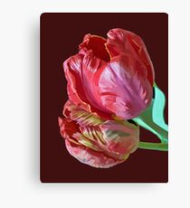 Two Red Tulips Vector  Canvas Print
