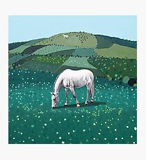 The White Horse of Alfriston Photographic Print