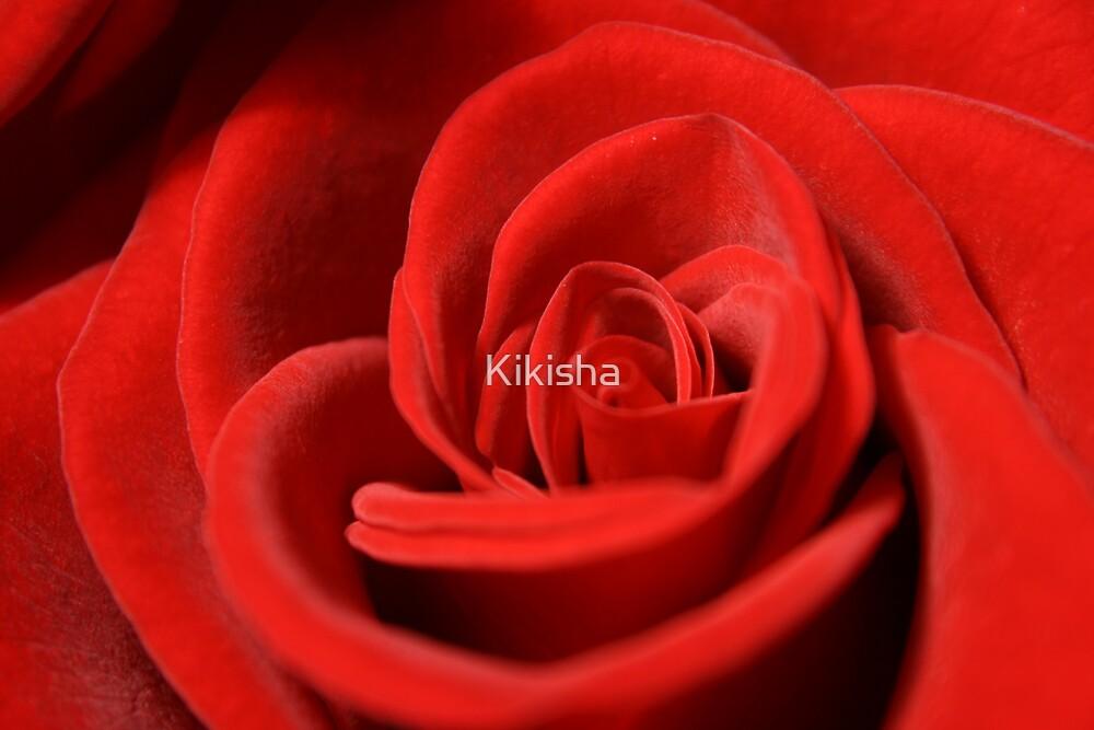 The Rose Series 1 by Kikisha
