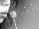 Wish by Mui-Ling Teh