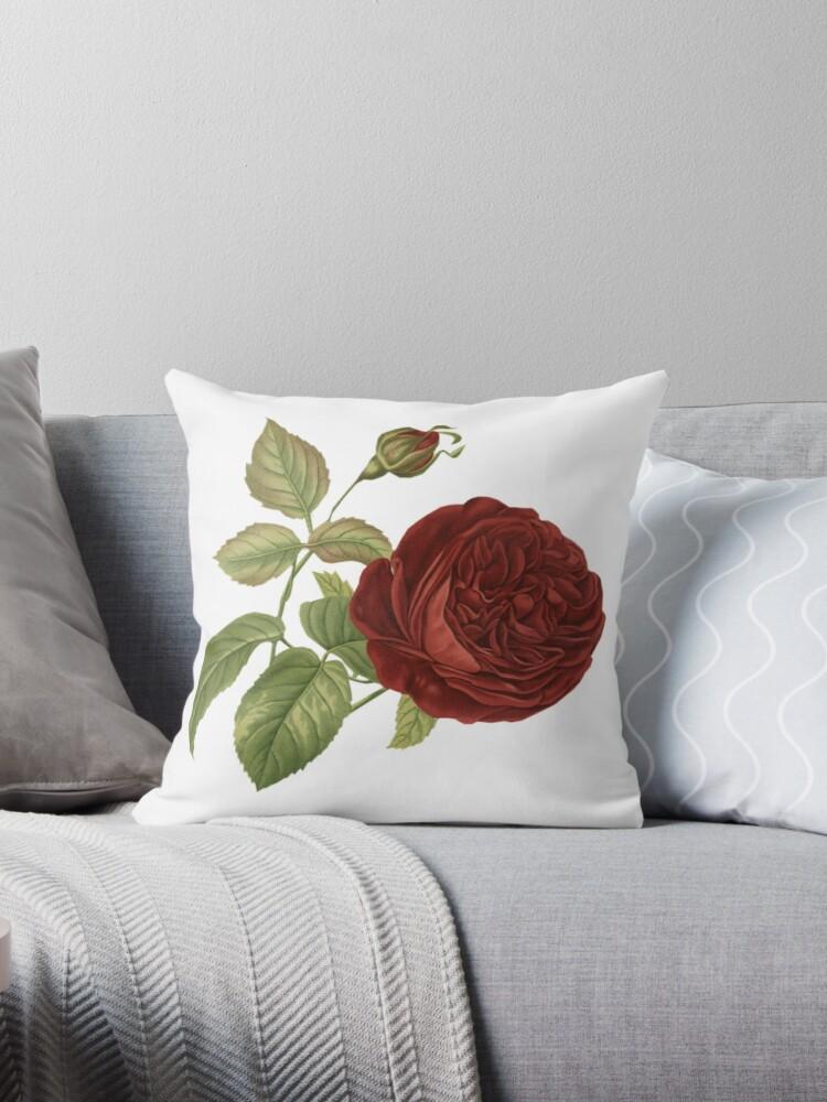 Vintage roses 1. by Alexandra Dahl