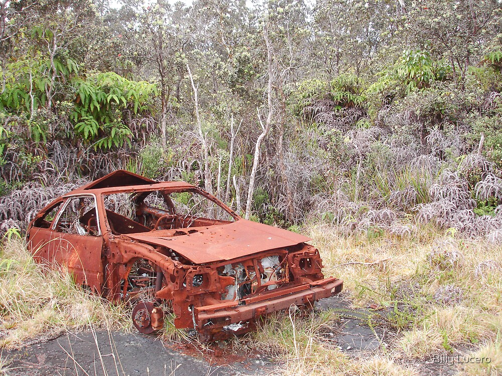 Wreckage in the jungle. by Billy Lucero