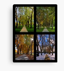 The Four Seasons at Colorado State University's Oval Canvas Print