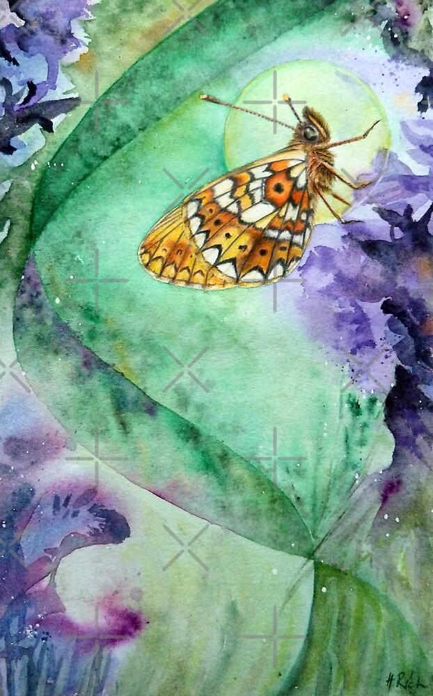Pearl Bordered Fritillary Butterfly by Helen Frost Rich