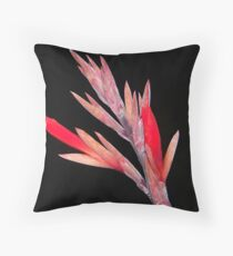 Before Bloom - Calla Lily Throw Pillow
