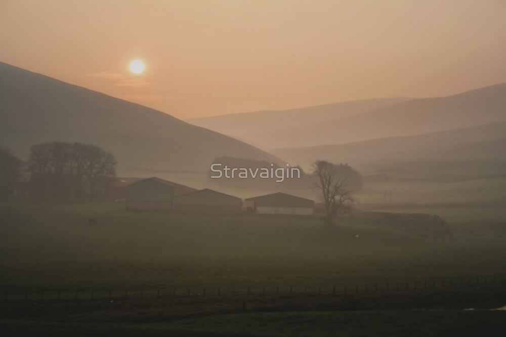 Sunrise, Southern Uplands, Scotland by Stravaigin