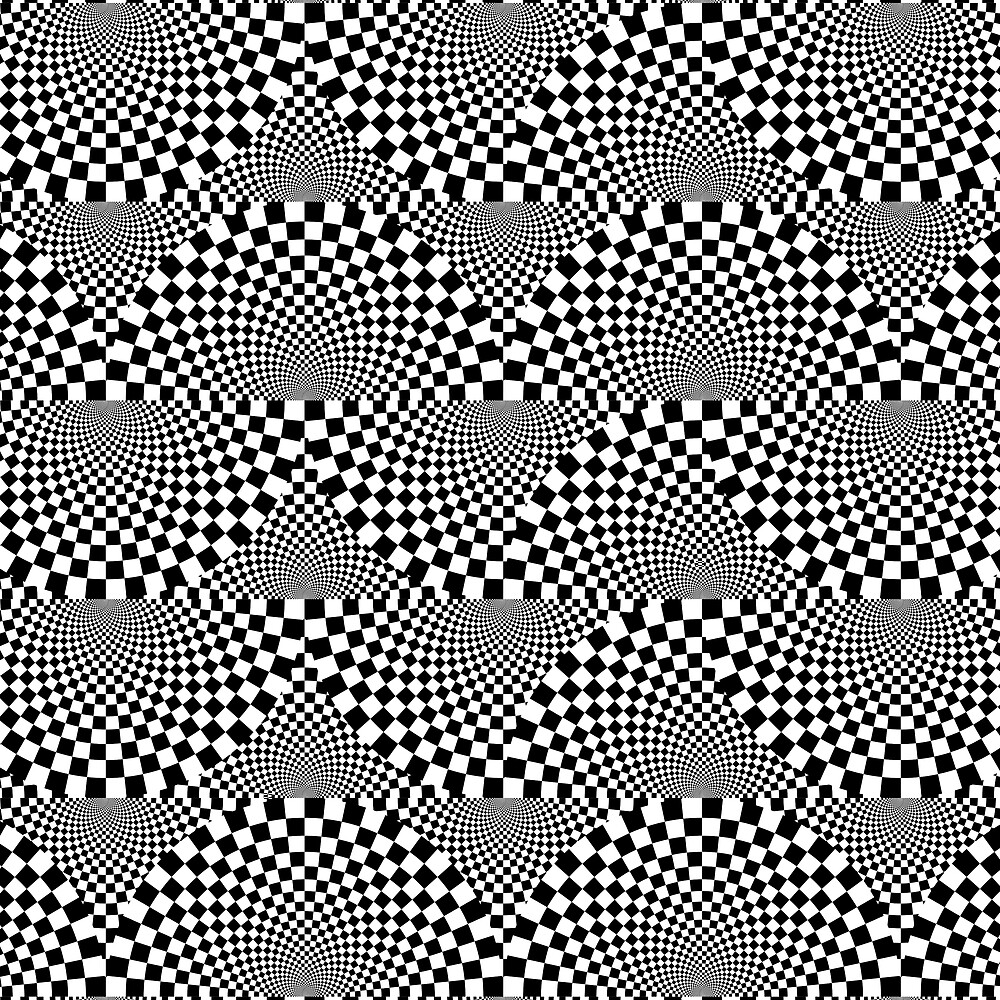 Black and White Op Art Illusion Design by Elaine Plesser