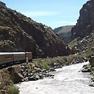 Classic Train, Arkansas River, Colorado by lenspiro