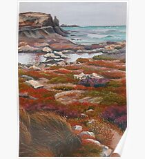 Winterscape, Cape Douglas Poster
