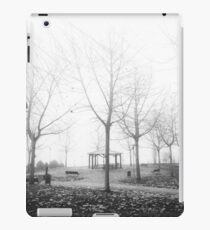 Invierno nebuloso B/N iPad Case/Skin