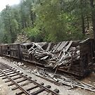 Dilapidated Rail Freight Car, Durango, Colorado by lenspiro