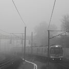 Foggy train by demistified
