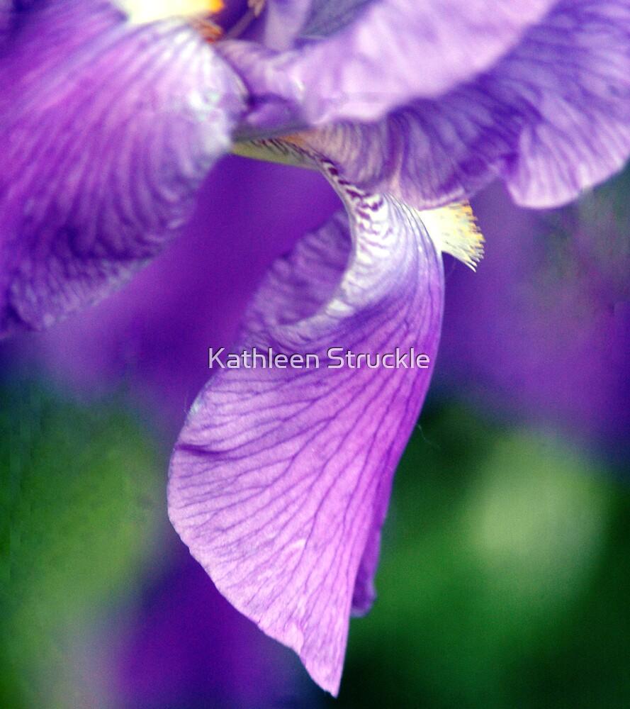 Iris Wisp by Kathleen Struckle