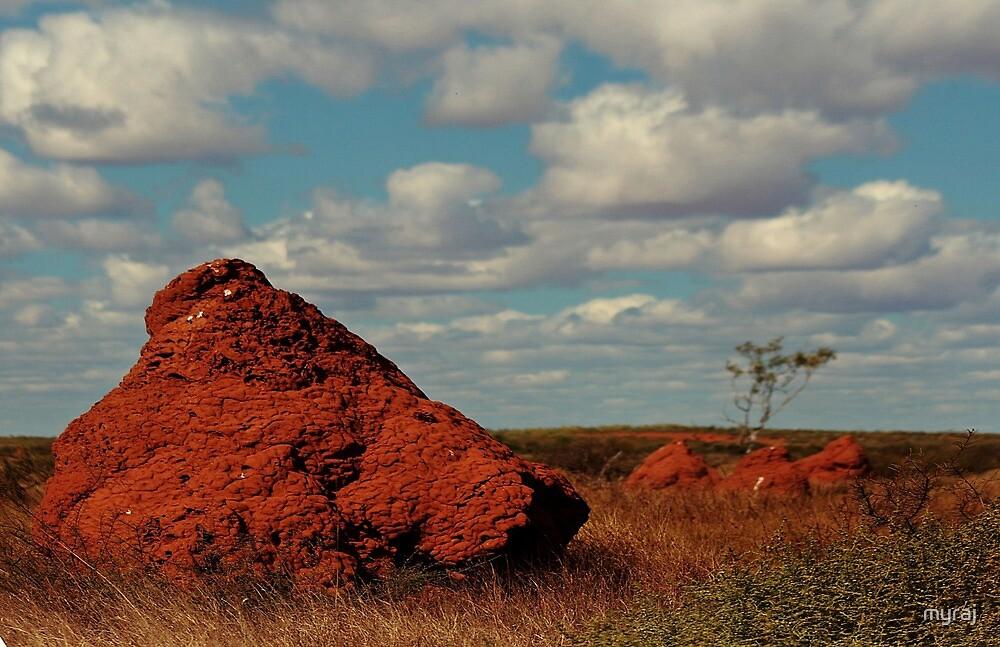 Thar's gold in them thar ant hills by myraj