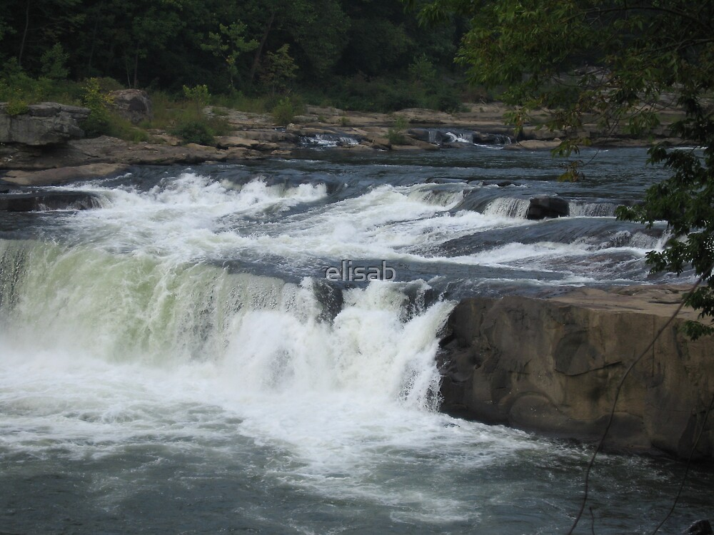 Ohiopyle Water Falls Pennsylvania by elisab