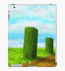 Avenue iPad Case/Skin