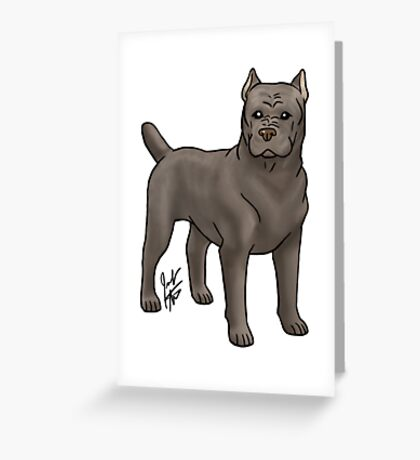 Cane Corso Greeting Card