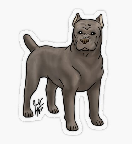 Cane Corso Transparent Sticker