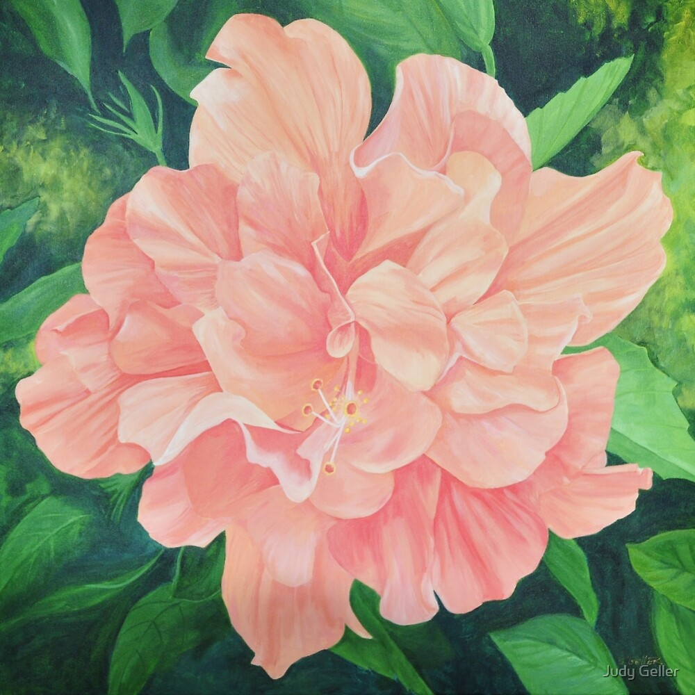 Coral Double Hibiscus by WORKABLE