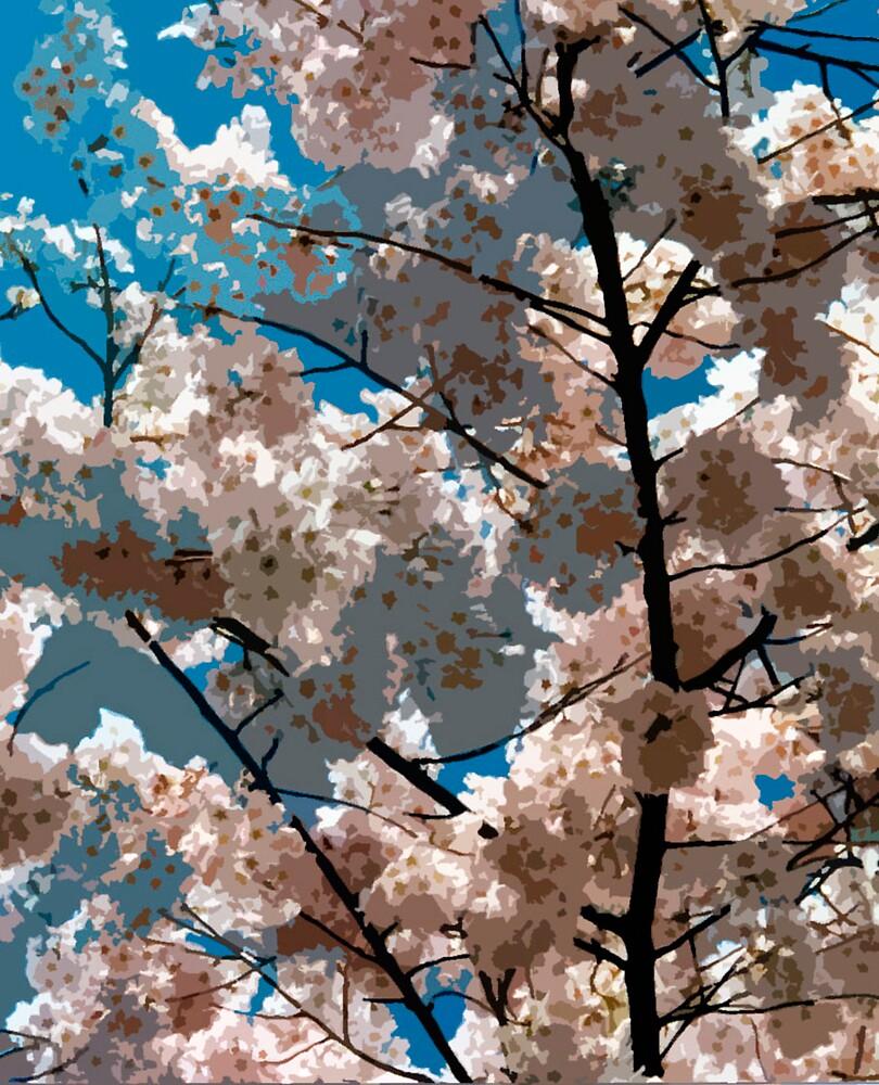 Cherry Blossom by Iby Villalobos