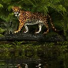 Jungle Jaguar by Walter Colvin