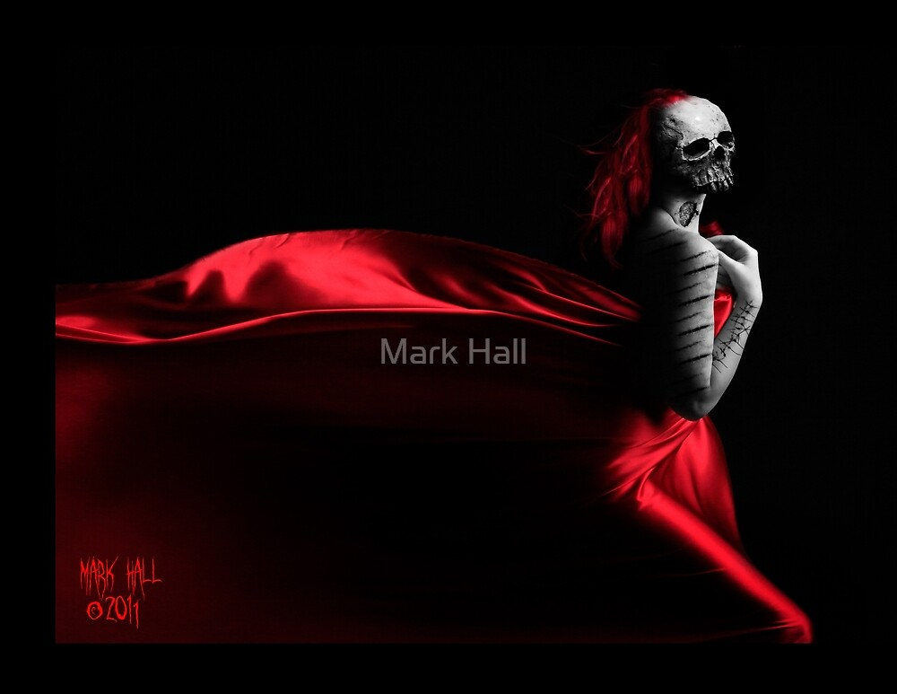 RED SHADOWS by Mark Hall