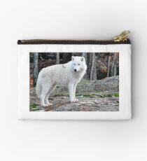 Arctic Wolf - Québèc, Canada Studio Pouch