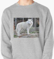 Arctic Wolf - Québèc, Canada T-Shirt