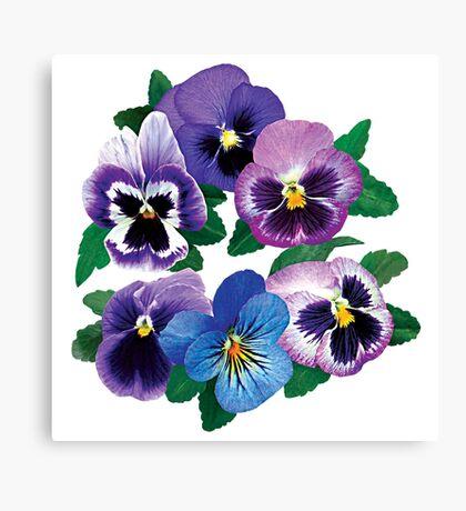 Circle of Purple Pansies Canvas Print