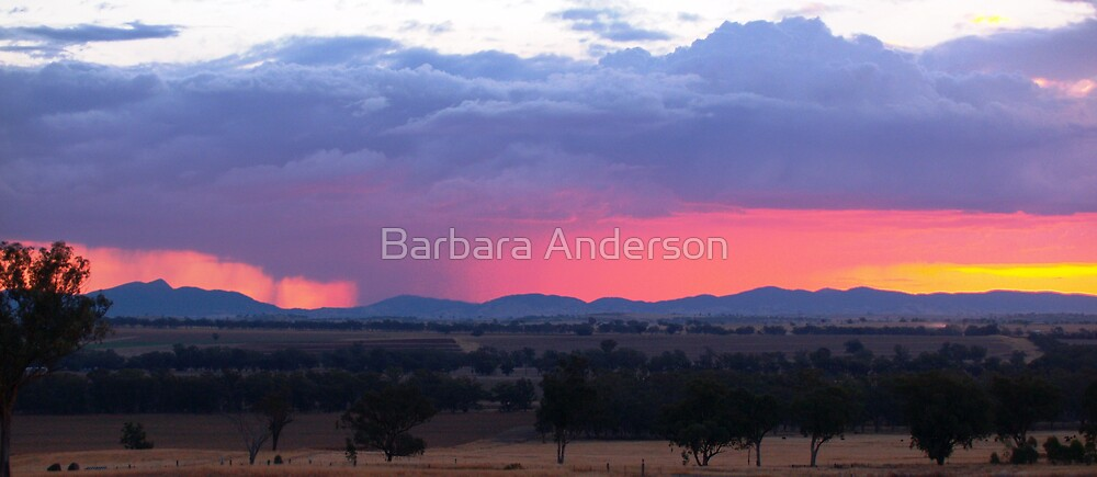 Rain in the Valley by Barbara Anderson