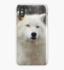 Arctic Wolf Close Up iPhone Case