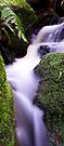 Somersby Falls by Dave  Gosling Photography